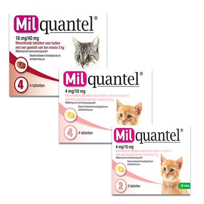 Milquantel Kat/Kitten | Petcure.nl