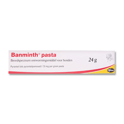 Banminth Paste dog