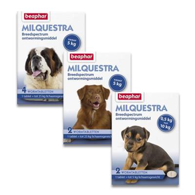 Milquestra Wurmkur (Milbemycine) Hund