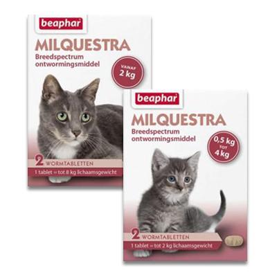 Milquestra Wurmkur (Mylbemycine) Katze