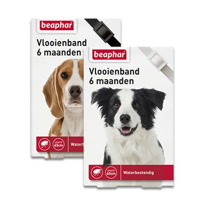 Beaphar Vlooienband (6mnd) Hond
