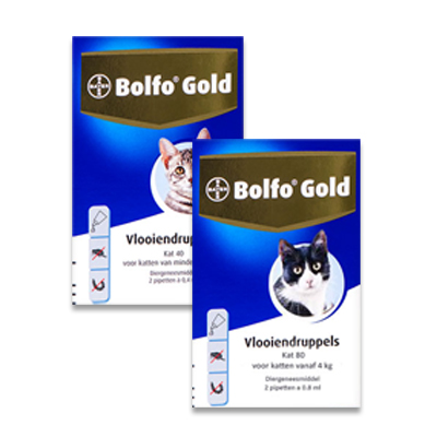 Bolfo Gold Cat