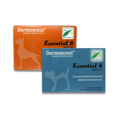 Dermoscent Essential 6 Spot-On | Petcure.nl