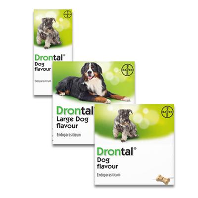 Drontal Hond