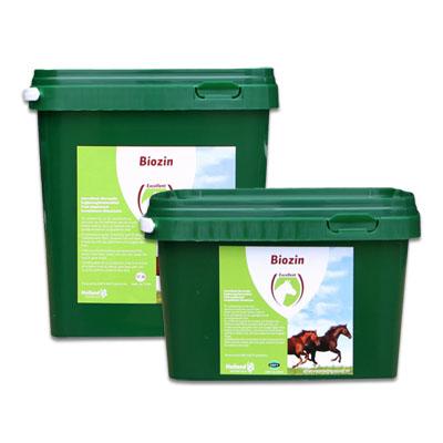 Excellent Biozin Paard
