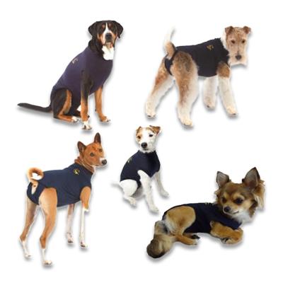 Medical Pet Shirt Hond | Petcure.nl