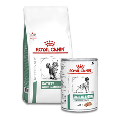 Royal Canin Diabetic Diet Hund (DS 37)