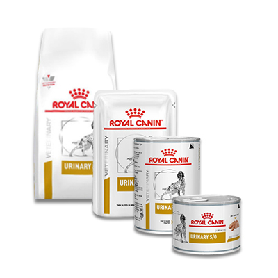 Royal Canin Urinary S/O Hond (LP 18) | Petcure.nl