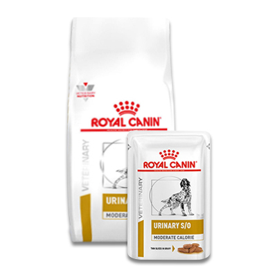 Royal Canin Urinary S/O Moderate Calorie Hond