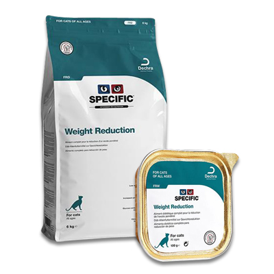 SPECIFIC FRD/FRW Weight Reduction Katze