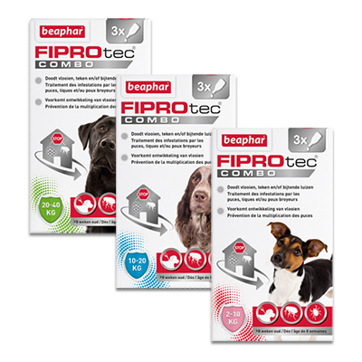 FIPROtec Combo Hond