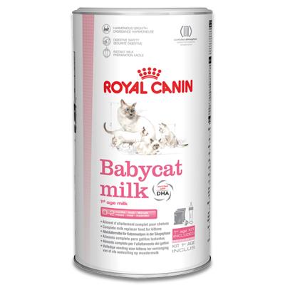 Royal Canin Babycat Milk - 300g