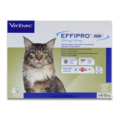 Effipro DUO spot-on Kat vanaf 6 kg - 4 pipetten   Petcure.nl