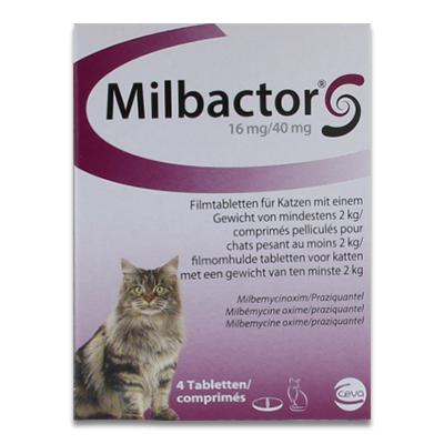 Milbactor Grote Kat - 4 Tabletten | Petcure.nl
