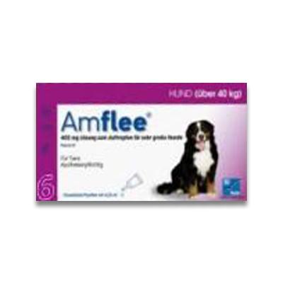 Amflee Spot-on Hund (Ueber 40kg) - 6 Pipetten