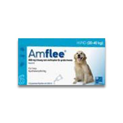 Amflee Spot-on Hund (20-40kg) - 6 Pipetten