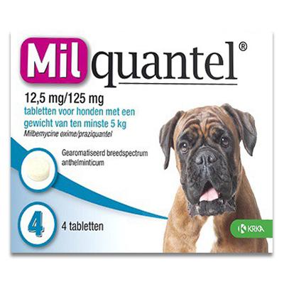 Milquantel Hond vanaf 5 kg (12,5 mg/125 mg) - 4 Tabletten | Petcure.nl