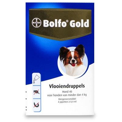 Bolfo Gold 40 - Hund (bis 4kg) - 4 Pipetten