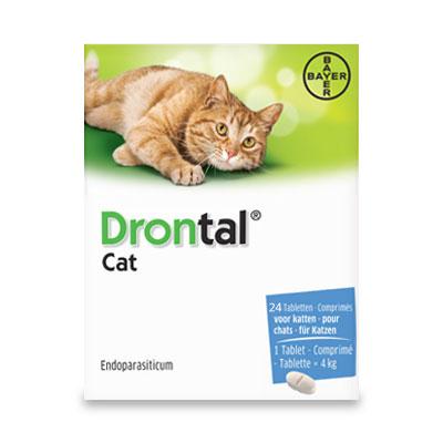 Drontal Kat (1 tot 4 kg) - 24 Tabletten | Petcure.nl
