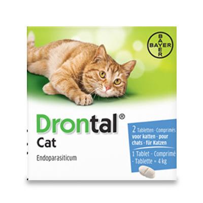 Drontal Kat (1 tot 4kg) - 2 Tabletten | Petcure.nl