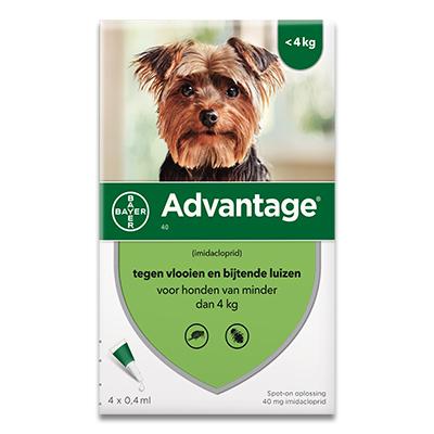 Advantage 40 (Hond tot 4 kg) - 4 Pipetten | Petcure.nl