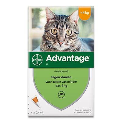 Advantage 40 (Kat tot 4 kg) - 4 Pipetten | Petcure.nl