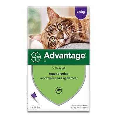 Advantage 80 (Kat 4 - 8 kg) - 4 Pipetten | Petcure.nl