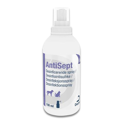 Antisept - 100 ml