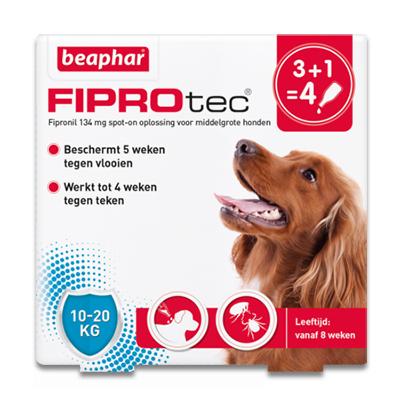 FiproTec Spot-on Hund (10-20 kg) - 4 Pipetten