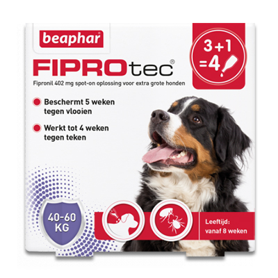 FiproTec Spot-on Hund (40-60 kg) - 4 Pipetten