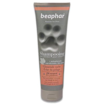 Beaphar Shampooing tube Glanzende vacht | Petcure.nl