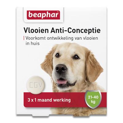 Beaphar Vlooien Anti Conceptie - L Hond (21-40 kg) - 3 stuks