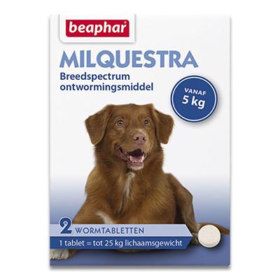 Beaphar Milquestra Grosser Hund (5 - 25kg) - 2 Tabletten