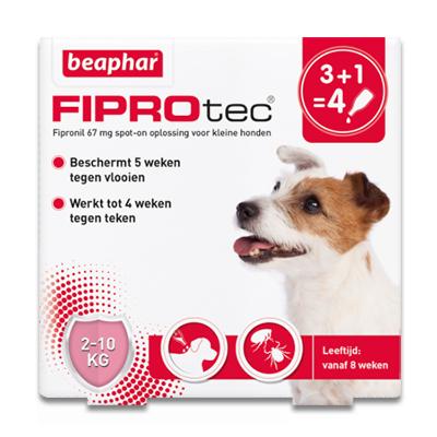FiproTec Spot-on Hund (2-10 kg) - 4 Pipetten