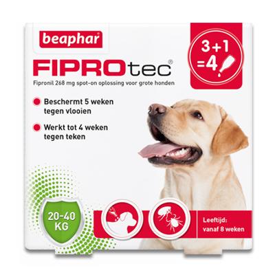 FiproTec Spot-on Hund (20-40 kg) - 4 Pipetten