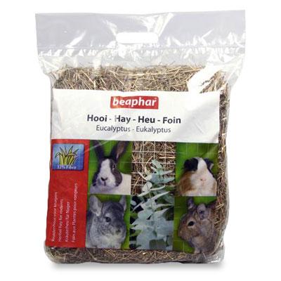 Beaphar Heu mit Eucalyptus - 500 gr