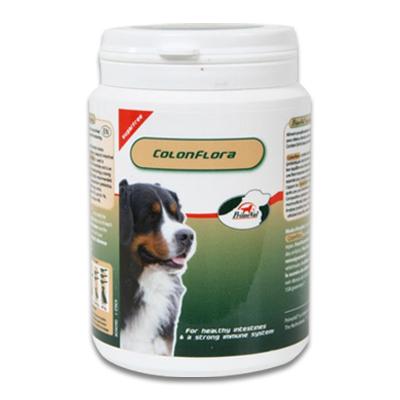 PrimeVal ColonFlora Hund - 140 g