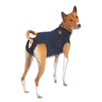 Medical Pet Shirt Hond - Blauw S | Petcure.nl