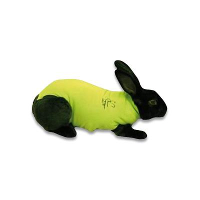 Medical Pet Shirt Konijn - Groen XXXS