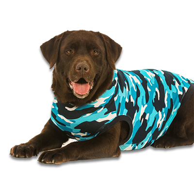 Recovery Suit Hond - M - Blauw Camouflage | Petcure.nl