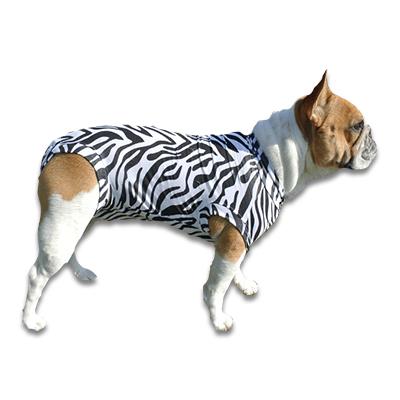 Medical Pet Shirt Hund - Zebra XXXS