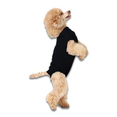Recovery Suit Hond - Xxxs - Zwart | Petcure.nl