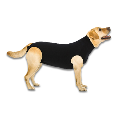 Recovery Suit Hund - M Plus - Schwarz