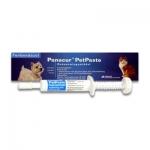 Panacur | Pet Pasta Injektor | 5 g